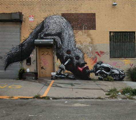 street art  roa art news   rise art