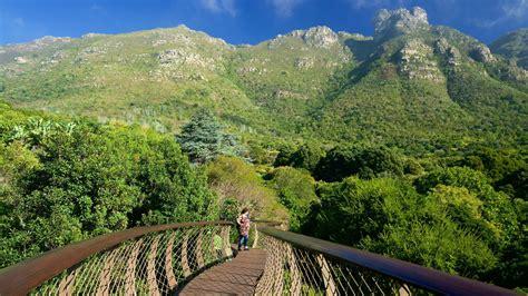 Pictures Of Kirstenbosch Botanical Gardens Kirstenbosch National Botanical Gardens Pictures View Photos Images Of Kirstenbosch National