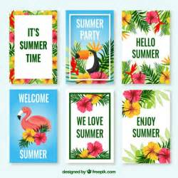 pack of tropical cards with flowers and birds vector free