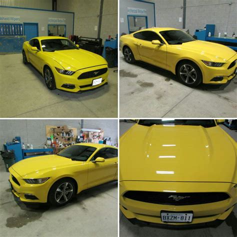 5 0 liter mustang 2015 yellow ford mustang 5 0 liter skyline reflections