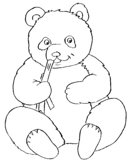 Cute Panda Bear Coloring Pages For Kids Gt Gt Disney Coloring Panda Colouring Pages