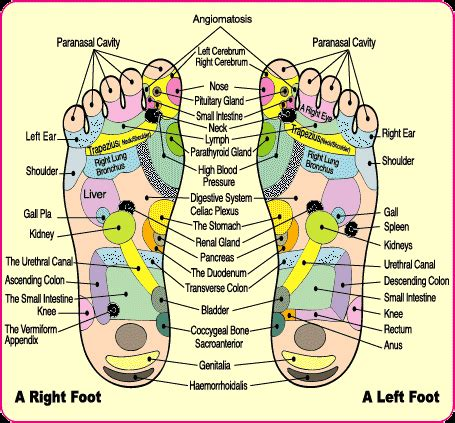 Detox foot bath and foot pad scams