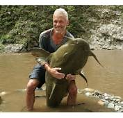 Waiting BD The Scariest River Monsters 17 Pictures