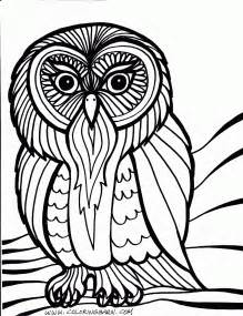 owl coloring pages for adults owl coloring pages for adults only coloring pages