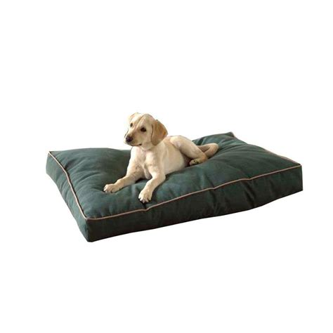 coolaroo pet bed coolaroo large size steel pet bed brunswick green 317287