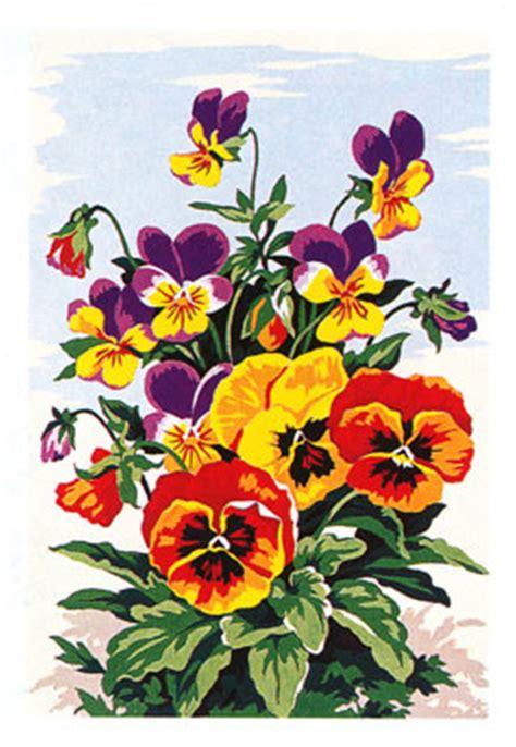 panze fiori 28 images panse o violetta pensiero fiori