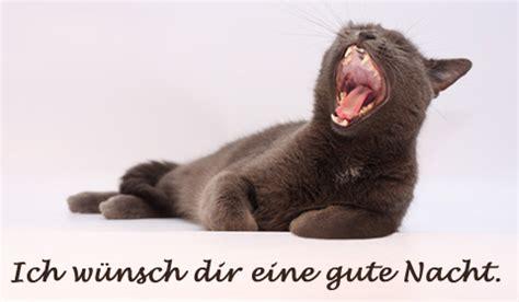 Schlaf Gut Bilder by Schlaf Gut Gru 223 Karte Versenden