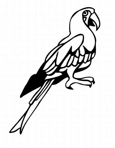 coloring pages of birds in the rainforest tropical rainforest bird coloring pages