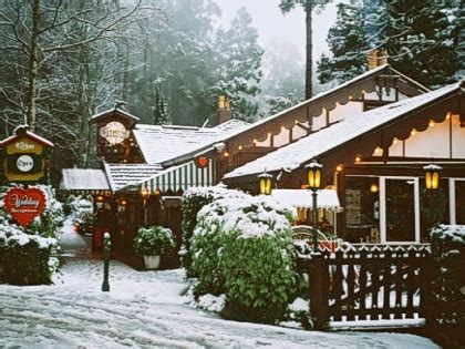 steindorf cottages dandenong ranges accommodation