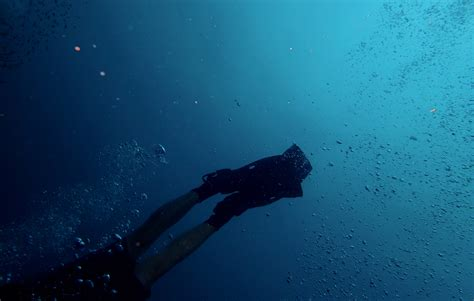 Dive Deeper how to dive deeper than 2000 metres on one breath