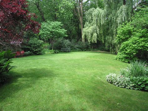 put grass in backyard very large 10 000 sq ft half acre landscaping ideas yardshare com