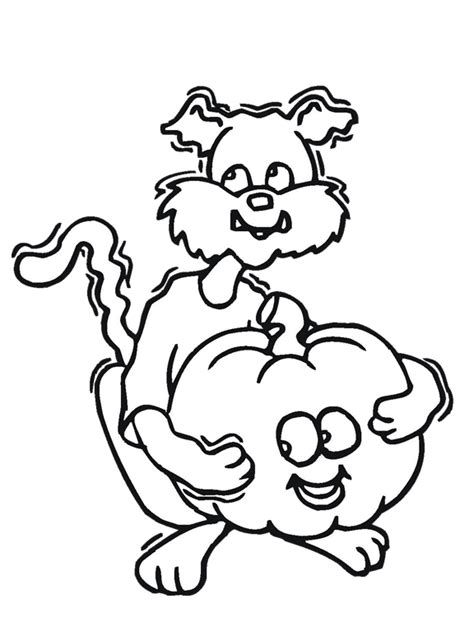 scaredy cat coloring page scaredy cat with pumpkin coloring page purple kitty