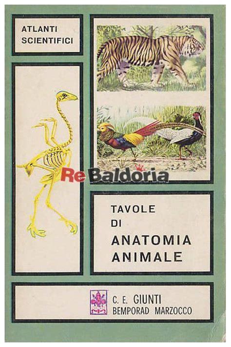 tavole di anatomia animale v muedra giunti bemporad