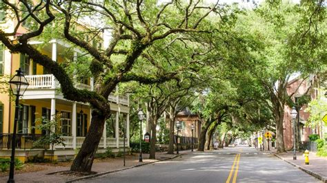 places to stay in charleston sc historic district charleston hotels hyatt place charleston historic district