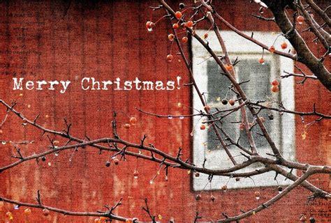 christmas barn opening   holidays burlington chamber  commerce