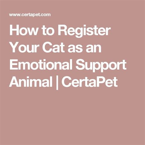 how to register as emotional support animal best 25 emotional support animal ideas on