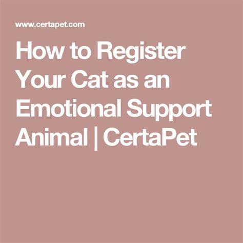 register as emotional support animal best 25 emotional support animal ideas on