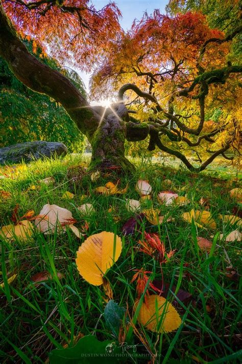 colorful landscapes colorful landscapes photo contest viewbug