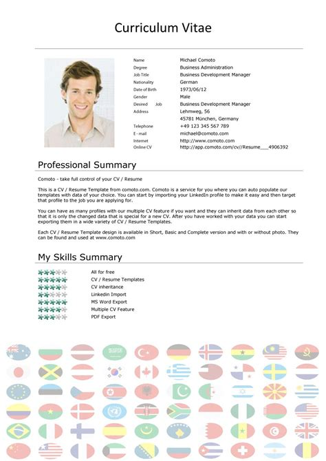 curriculum vitae template international standards 48 great curriculum vitae templates exles template lab