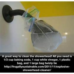 clean shower head easily and naturally for the home