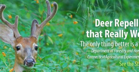 deer repellent   works deer rabbit repellent