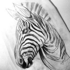 zebra tattoo ink sketch tattoo illustration today ink d 246 vme drawing