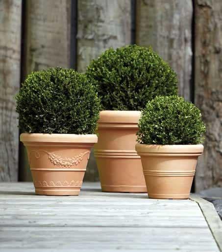 vasi in pvc i migliori vasi per il tuo giardino in resina o plastica