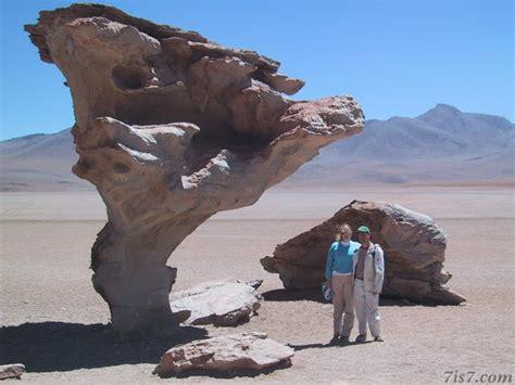 stone desert photo uyuni desert stone tree