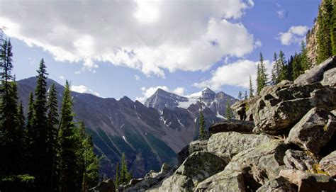 buying a house in alberta buying property in banff alberta banff national park