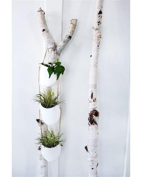 Pflanzen Am Balkon 3396 by подвесное кашпо для цветов своими руками 8 мастер классов