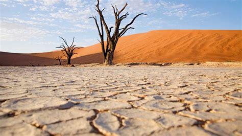 wonders  namibia  safari  kuoni travel