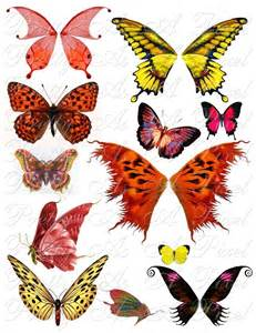 butterfly wings in red orange and yellow set 4 instant