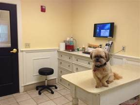 file veterinary office with jpg wikimedia commons
