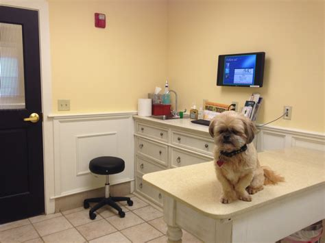 Vet Office by File Veterinary Office With Jpg Wikimedia Commons