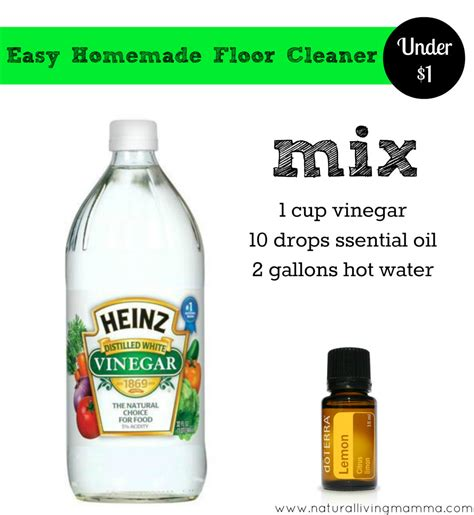 spring cleaning  homemade  natural cleaners natural chow