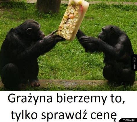 Niedziela Handlowa Niedziela Handlowa Memy Pl