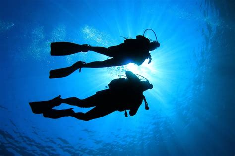how to dive open water diver scuba shack cape town