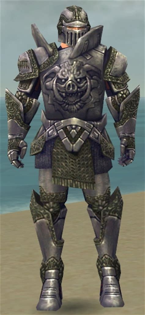 1427 Set Gw Grey Warriors Warrior Platemail Armor Guildwars Wikia Fandom