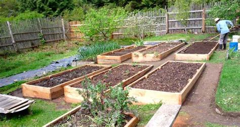 More About Gardening Eartheasy 187 How To Build A Raised Garden Bed On