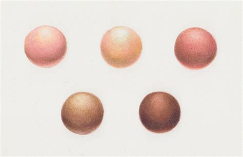 creating skin tones with colored pencils