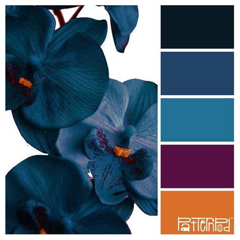 colour inspiration 5282 best colour combos images on pinterest colors