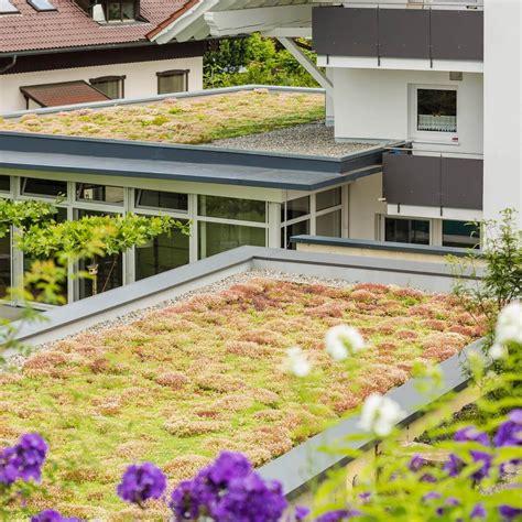 gartenbau friedrichshafen gartenbau im raum konstanz ulm und friedrichshafen