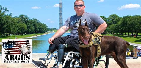 service for veterans service dogs helping veterans on k 9 veterans day dogtime