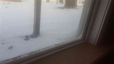 windows icing up inside house 127 marvin windows and doors reviews and complaints pissed consumer