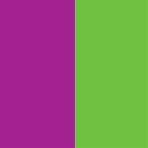 purple color schemes purple color scheme white and purple bouquet