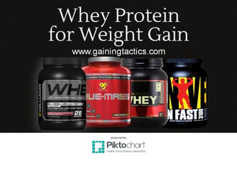 protein to gain weight how to use whey protein to gain weight gaining tactics
