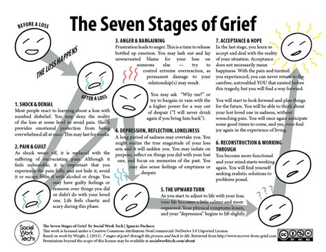 cycle of grief diagram cycle of grief the seven stages of grief click to