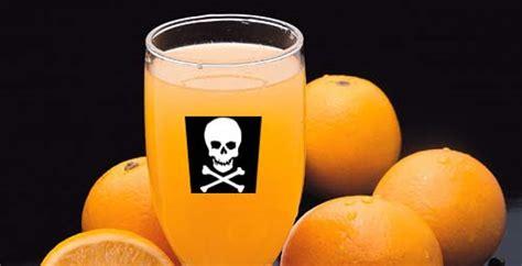 can dogs drink orange juice orange juice quotes like success