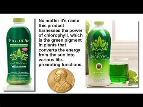 Synergy Chlorophyill Plus synergy worldwide liquid chlorophyll or phytolife