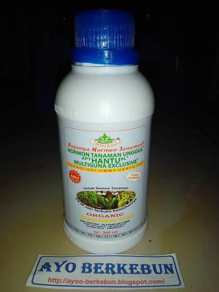 Pupuk Hantu Untuk Bunga hormon tanaman unggul zpt hantu sl ayo berkebun